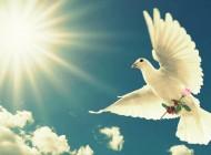 O cristão e a plenitude divina