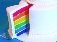 O objetivo do casamento gay não é o casamento gay