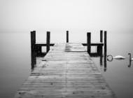 Qual a garantia da fidelidade?